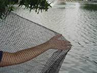 Pond net - 20' x 20'