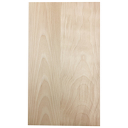Solid Slab Door - Birch