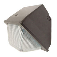 Small Wallpack-Borosilicate Lens WP12