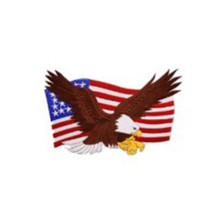 #1233 EAGLE ON FLAG 9""