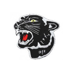 """#1351 PANTHER HEAD 4"""""""