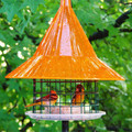Sky Cafe Orange Oriole Bird Feeder