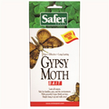 Safer's Gypsy Moth Trap Replacement Bait