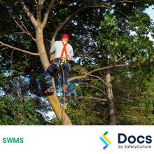 Tree Work (Aerial) SWMS 10077-3