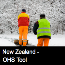 Cold Conditions Risk Assessment Form - NZ