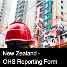 Conformance Report - NZ