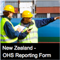 Contractor Spot Inspection Form - NZ