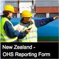Contractor Spot Inspection Form - NZ