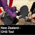 Event / Injury / Investigation Report Form - NZ (110517)