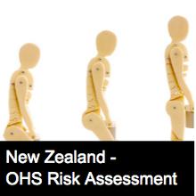 Hazardous Manual Handling Task Risk Assessment Form - NZ