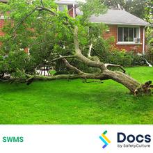 Make Safe (Tree Removal) SWMS 10579-2