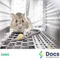 Rodent Control SWMS | Safe Work Method Statement
