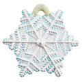 Christmas Snowflake painted.