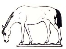 Horse with head down