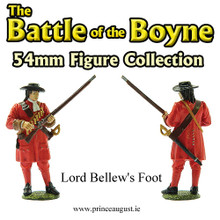 The Battle of the Boyne Lord Bellew's Foot
