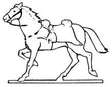 Napoleonic wars horse