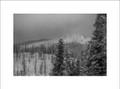 Winter Lolo Pass Black & White