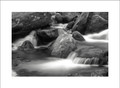 Detail, Roaring Fork Creek B&W