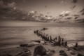 Lighthouse Beach and Old Pier - Sepia Print