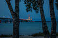 The Mackinac Bridge in the evening through the trees.