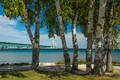 Mackinac Bridge through the trees at Old Mackinac Point. Part of the documentary The Sweetwater Seas / Great Lakes Collection. Fine art print on archival paper ready for framing or on an archival canvas wrap printed to the exacting standards of the artist.