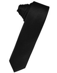 Solid Satin Skinny Long Tie (Self-Tie)
