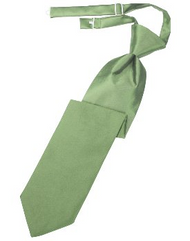Sage Solid Satin Long Tie