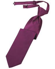 Sangria Solid Satin Long Tie