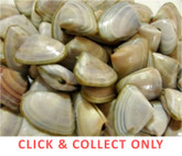 Cockles 400g - CLICK & COLLECT ONLY