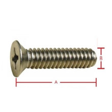 CSK Metal Thread 1/4inch x 1 1/4inch 2PCS 304 Grade Stainless Steel