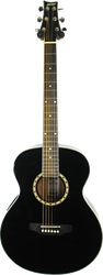 Ashton SL29 BK Acoustic Guitar Black