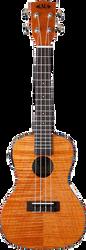 Kala KA-CEME Exotic Mahogany Acoustic/Electric Concert Ukulele