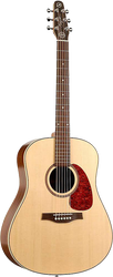 Seagull Maritime SWS Semi-Gloss Q1T Acoustic/Electric