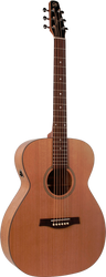 Seagull S6 Cedar Concert Hall Q1T Acoustic/Electric