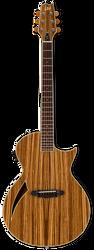 ESP LTD TL-6Z Thinline Acoustic/Electric Zebrawood Natural