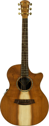 Cole Clark Angel 2 CCAN2EC-RDRW-G Gloss Redwood Rosewood