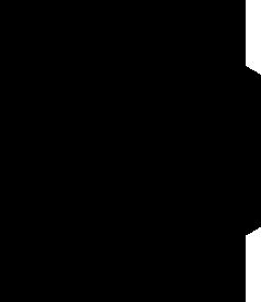 t2crossfit-logo-black.png