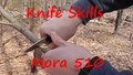 Mora Spine Sharpening Service