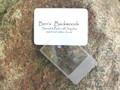 Fresnal Lens Magnifier 5x Firestarter