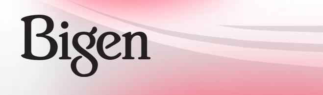 bigen-banner.png