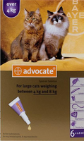 Advocate Cat Large Over 9lbs (4Kg) - 6 Pack