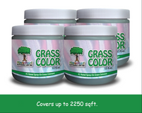 9 Pack Hipster Grass Color