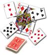 Misprediction DiFatta Card Trick Magic