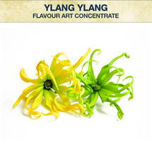 Flavour Art Ylang Ylang Concentrate