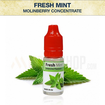 Molinberry Fresh Mint Concentrate