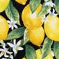 Fresh Lemons Poppy Surgical Head Caps - Image Variant_0