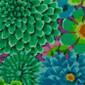 Serene Green Bouquet Pixie Scrub Cap - Image Variant_0