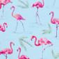 Flamingo Beach Club Pixie Surgical Caps - Image Variant_0