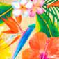 Bora Bora Poppy Surgical Hats - Image Variant_0