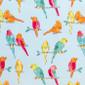 Parakeet Street Pixie Scrub Caps - Image Variant_0